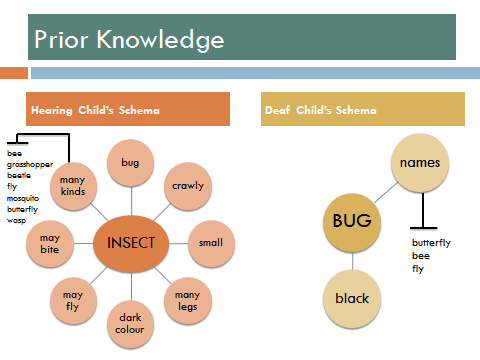Prior Knowledge Examples - Hearing Child's Schema (Web) - In the middle is the Word Insect connected to bug, crawly, small, many legs, dark colour, may fly, may bite, many kinds. Attached to 'many kinds' is bee, grasshopper, beetle, fly, mosquito, butterfly, wasp. Deaf Child's Schema (Web) - In the middle is the word bug connected to black, names. Attached to 'names' is butterfly, bee, fly